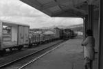 Photograph of diesel train at Paeroa station; Les Downey; 1972-1976; 14-2848