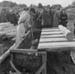 Fence post chemical treatment, June 1958; Ron Vine; 1958; 10/012/005
