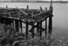 Photograph of wharf, Dargaville; Les Downey; 1973; 14-3909