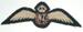 Pilot's Badge [RNZAF]; 2003.873