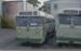 Photograph of MOTAT buses; Les Downey; 1972-1976; 14-4105