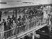 TEAL Solent service to Sydney; Whites Aviation Limited; 15 Nov 1949; 14-6823