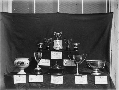 A caged bird competition; Unidentified; 1934; 13-2024
