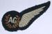 Rear Gunner Badge [RNZAF]; 2003.879