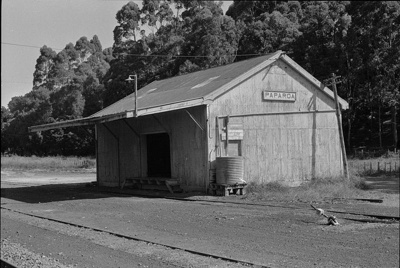 Photograph of goods shed, Paparoa station; Les Downey; 1972-1976; 14-1015