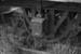 Photograph of 1883 NZR axle box; Les Downey; 1972-1976; 14-2105