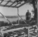 Farmhouse under construction; laboratory guinea pigs, 29 April 1957; Ron Vine; 1957; 10/012/004