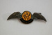 Lapel Pin [Wellington Aero Club]; Wellington Aero Club (New Zealand); 2006.224