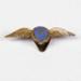Aero Club Badge [ATC]; 2014.255