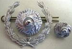 Wreath and Pips [Rank Insignia]; 2006.99