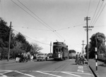 Tram no. 204, Victoria Ave, Remuera; Graham C. Stewart (b.1932); 06-1216