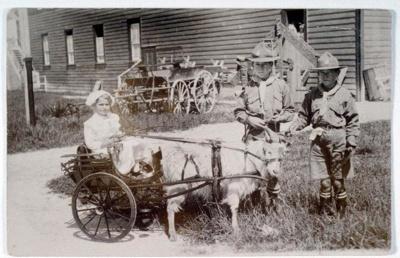 Goat cart, Marsh, R.G., Circa 1920, OP-3179