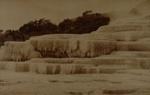 Trickling Buttress, White Terrace, Valentine, George, Circa 1885, OP-2540