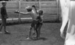 Boy and girl boxing; Jack Lang; 1967; 2010.100.1982