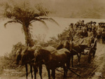 Two coach loads of tourists, Marsh, R.G., 16/04/1914, OP-548