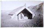 Hinemihi post eruption, Spencer, Charles, Circa 1886, OP-2973