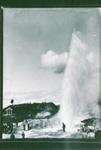 Wairoa Geyser, GP-202