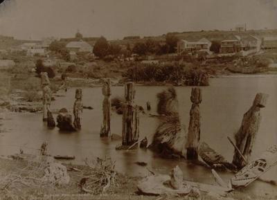 Pallisades of the sunken pah, Ohinemutu, Valentine, George, OP-2535