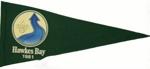 1981 National Sea Scout Regatta