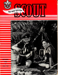 The New Zealand Scout