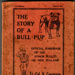 The Story of a Bull Pup; 1917