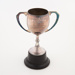 Trophy, Edendale Darts Club Consolation Cup; Unknown manufacturer; 1973; WY.2008.19.21