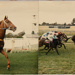Photograph, Beange Winner at Riccarton ; Unknown photographer; 1980-1990; WY.1986.62