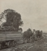 Photograph, Gentleman with Horses pulling Timber Trolley; Alma Studio, Invercargill; 1890-1900; WY.0000.321