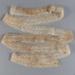 Lace, Ecru Cotton; Unknown maker; Unknown; WY.0000.139
