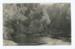 Postcard, Munro's Bush, Mimihau River, Wyndham; McEachen & Son; 06.04.1911; WY.0000.1227.2