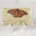 Butterfly, Mataura Island School Monarch; D Plexippus; butterfly; WY.0000.872