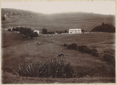 Photograph, Residence of Alexander Matheson; Gerstenkorn, Karl Andreas; 1889-1898; WY.1993.76.3