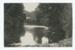 Postcard, Munro's Bush, Mimihau River, Wyndham; McEachen & Son; 06.04.1911; WY.0000.1227.3