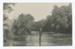 Postcard, Munro's Bush, Mimihau River, Wyndham; McEachen & Son; 06.04.1911; WY.0000.1227.5