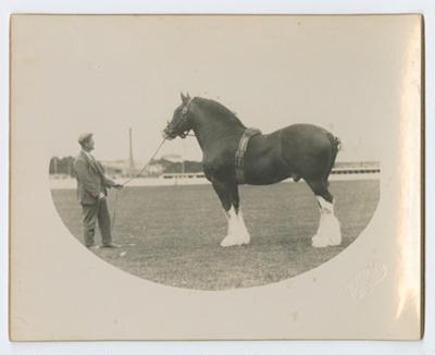 Photograph, Scotland Superb; Blaikie, W.N; 1933; WY.1993.110