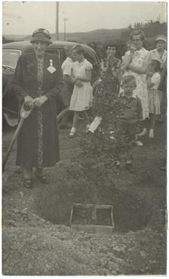 Photograph, Mrs Foster Redan Jubilee; Phillips, E.A; 23.01.1960; WY.0000.1270
