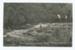 Postcard, Munro's Bush, Mimihau River, Wyndham; McEachen & Son; 06.04.1911; WY.0000.1227.6