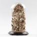Hair Sculpture, Dickie Family of Tuturau; Dickie, Elizabeth; 04.03.1896; WY.0000.486