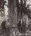 Photograph, Two Axemen; Alma Studio, Invercargill; 1890-1900; WY.0000.323