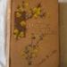 Brook, 'A Dresden Romance'; Laura M. Lane (b.1846, d.1928), F. Dadd; Not dated; XHH.3216.9