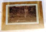 Velvet Framed Pictures; 1906; 1977-0360-1