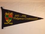 Pahiatua Centennial Pennant; 2001-2750-1
