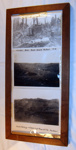 Framed Photo Board -  Bushfelling at Makuri 1918; c1920's; 1993-2000-1