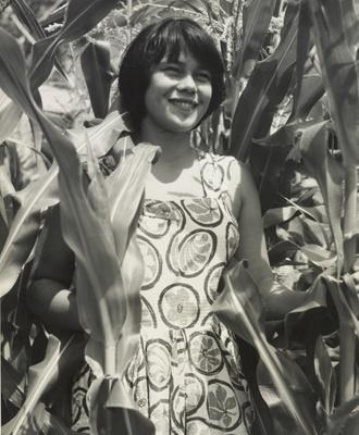 Jo Howearth, Waimamaku ; Lee-Johnson, Eric; 1956; O.006627