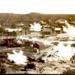 Whakarewarewa  Village; 3