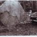 Photograph, printed copy; G Nicholls; c1950s; IH100.025