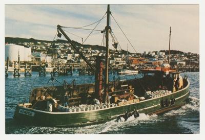 Postcard, The 'Monica'; P. Hudson; 1982; BL.P491