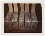 Photograph, Boxes of Crayfish Tails ; Unknown Photographer; 1970-1990; BL.P771