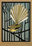 Pied Fantail, Thomas Gulliver, 1919, 1932/3/3