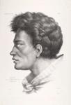 Nataï. L'un des chefs de la baie Bream (Nouvelle Zélande) [Nataï. One of the chiefs of Bream Bay], Antoine Maurin, Louis de Sainson, circa 1830, 1835 {published}, 1964/18/2